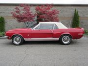 1968 Ford Mustang Shelby Cobra GT 350 Convertible Concours(1 of 404)